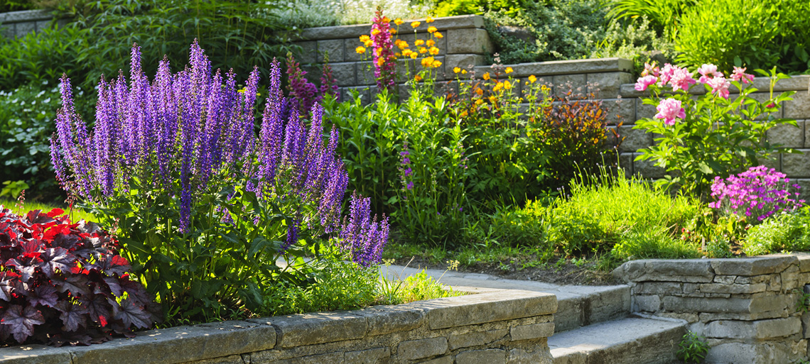 Outdoor Landscaping & Staging